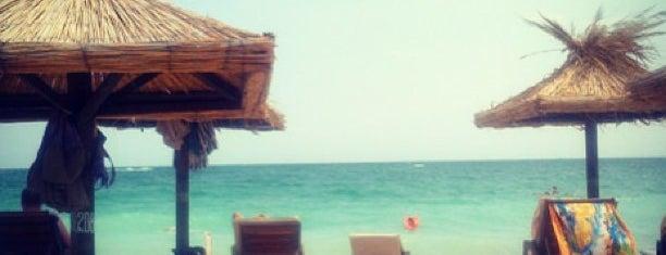Плаж Златни Пясъци (Golden Sands beach) is one of Tempat yang Disimpan Caner.