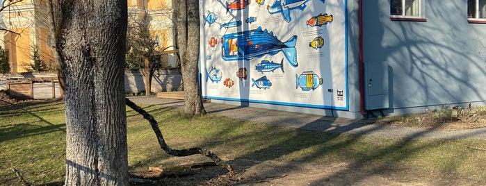 Miesto Laboratorija is one of Vilnius.