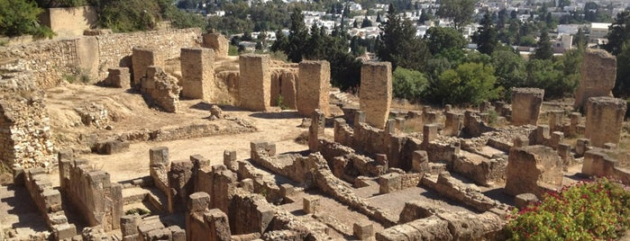 Carthage National Museum is one of People, Places, and Things.