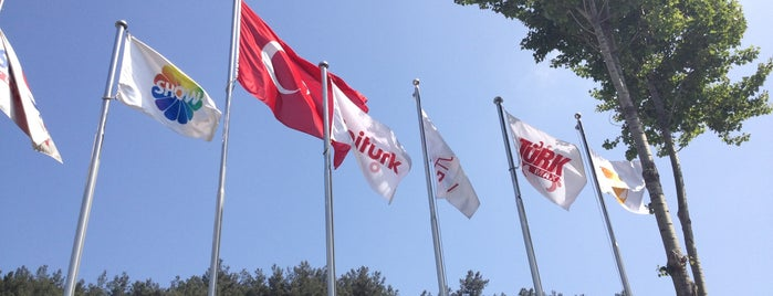 LigTV & Türkmax - ShowTV is one of Posti che sono piaciuti a glsh4574.