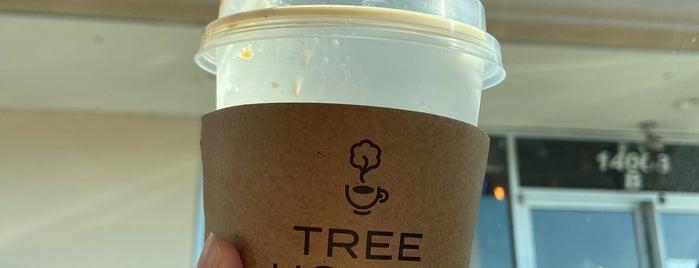 Tree House craft coffee  & frozen yogurt is one of Coffee shops Houston.