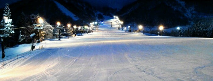 Hakuba Goryu Snow Resort is one of Posti che sono piaciuti a Hideo.