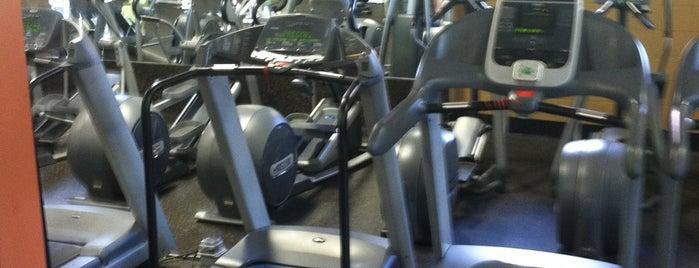 All 4 Fitness is one of Adam'ın Beğendiği Mekanlar.