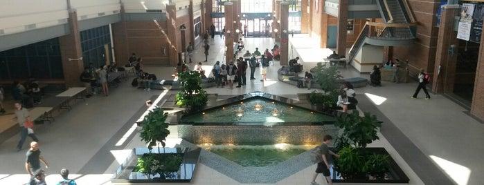 Collin College is one of Tempat yang Disukai Matt.
