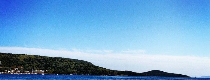 Bitez Yalısı is one of themaraton.