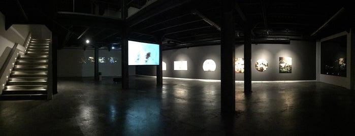 Gaia Gallery is one of müzeler.