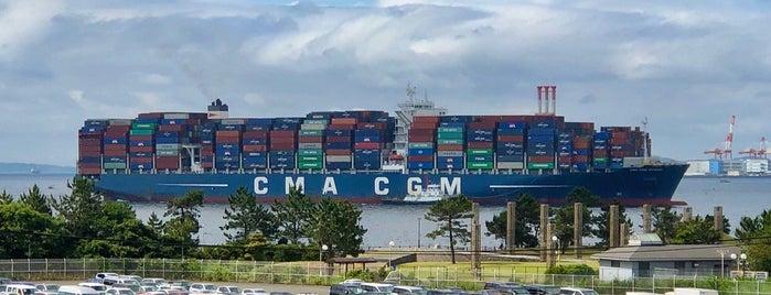 Yokohama Port International Cargo Center is one of สถานที่ที่ Terrence ถูกใจ.
