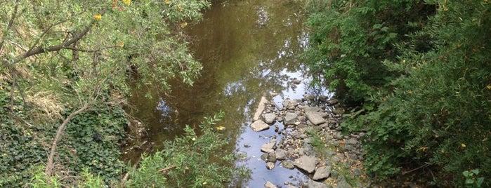 Tigers Lair -WC is one of Orte, die Thirsty gefallen.