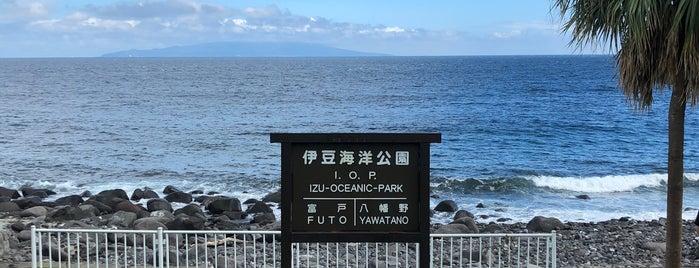 伊豆海洋公園 is one of 城ヶ崎海岸.