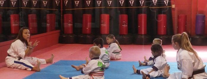 DAS Martial Arts Academy is one of Tempat yang Disukai Mario.