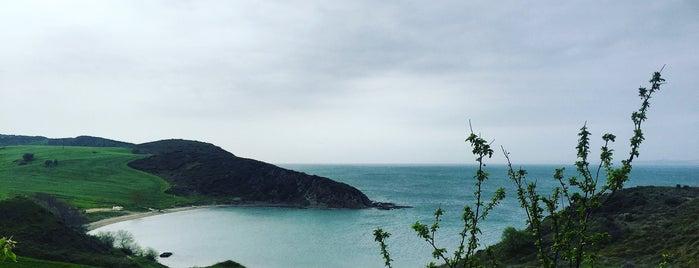 Güneyli Sahil is one of Dilara'nın Beğendiği Mekanlar.