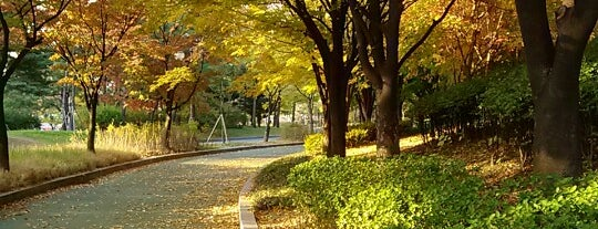 Yeouido Park is one of Locais curtidos por Egor.