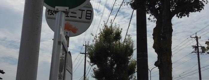 桜ヶ丘三丁目 is one of 東鉄バス 名鉄緑台線.