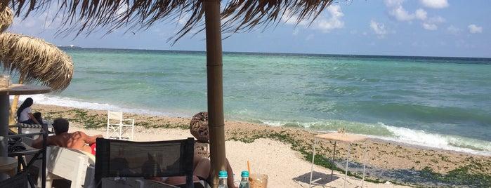 YUVA Beach Bar is one of Varna's best.