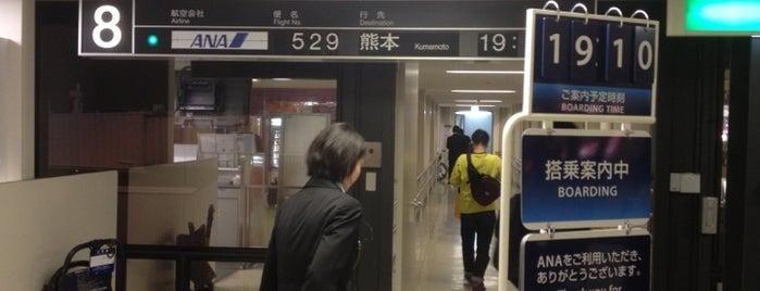 Gate 8 is one of 大阪国際空港(伊丹空港) 搭乗口 ITM gate.