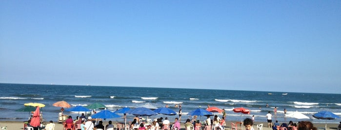 Playa Miami is one of Veracruz.
