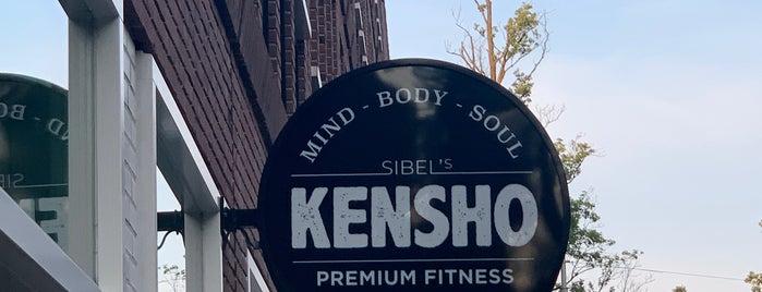 Kensho Premium Fitness is one of Amsterdam.