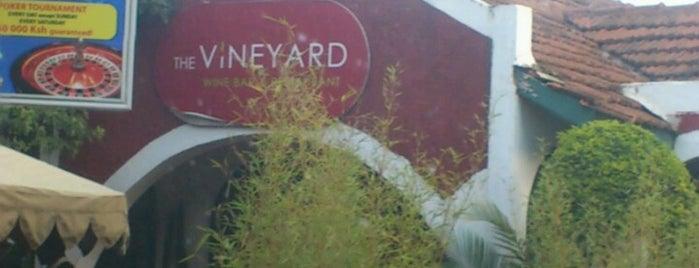 Vineyard is one of Lieux sauvegardés par Helene.