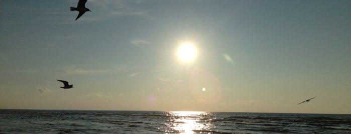 Jaundubultu pludmale is one of Brīnos.