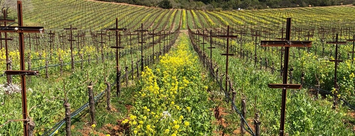 Oakville Ranch Vineyards is one of 2012 Wine Country Pass Wineries.