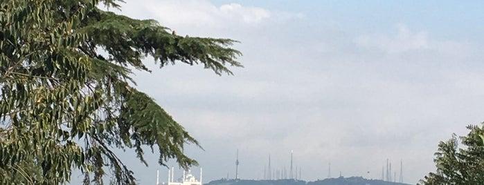 Beltur Taksim is one of Taksim Meydani.