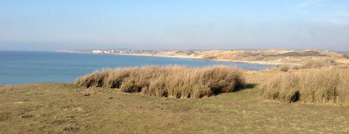 Dunes de la Pointe aux Oies is one of Opaalkust.
