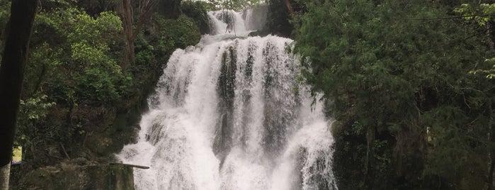 Cascadas de Tamasopo is one of Lieux qui ont plu à Abraham.