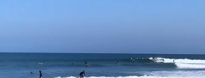 Surfrider Beach is one of LA 🌴.