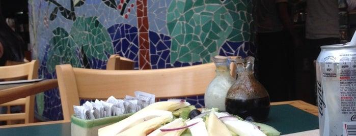 Cafeteria La Selva FCE is one of Posti che sono piaciuti a Patricia.