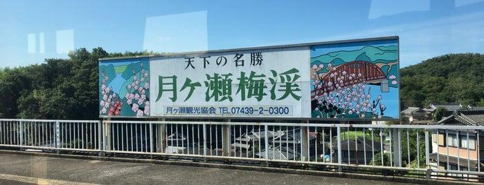 Tsukigaseguchi Station is one of Locais curtidos por Shigeo.