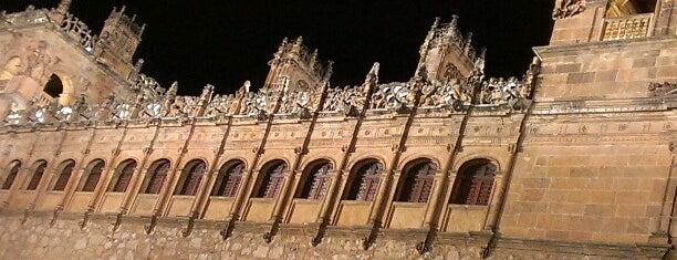 Palacio de Monterrey is one of Pasear en Salamanca.