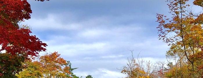 Jens Jensen's Door County Winding Road is one of Green Bay.