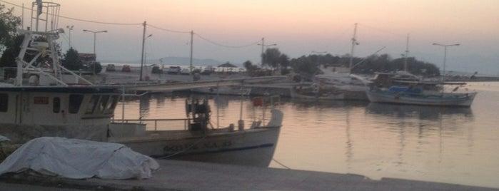 Fanari Port is one of Lugares favoritos de Mehmet Ali.