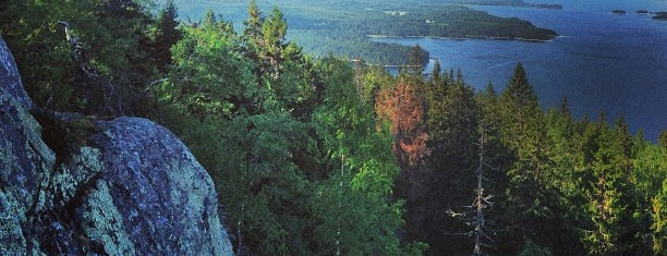 Koli is one of Places to visit in Finland.