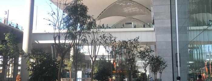 Аэропорт Стамбул (IST) is one of Can : понравившиеся места.