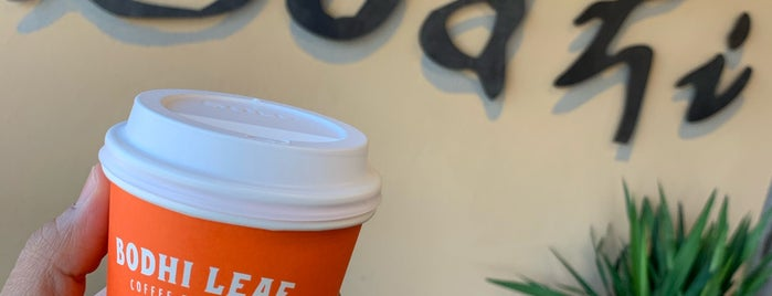 Bodhi Leaf Coffee Traders is one of Posti salvati di Rachel.