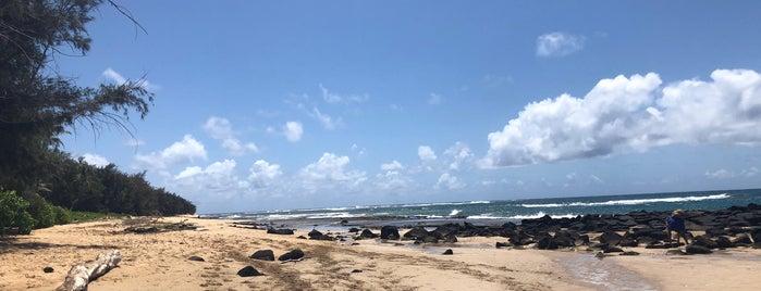 Mahaulepu Beach is one of Kaui.