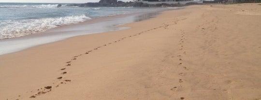 Ahungalla Beach is one of JulYa 님이 저장한 장소.