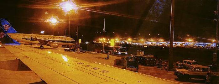 Terminal 2 is one of Orte, die Shank gefallen.
