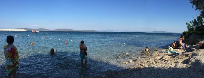 Korsan Plajı is one of Lugares favoritos de İpek.