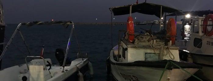 ebreka balık ekmek teknesi is one of Sadalmelek'in Beğendiği Mekanlar.
