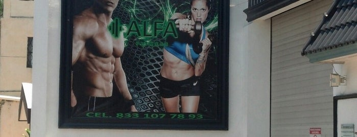 alfa fitness is one of Lugares de interés.