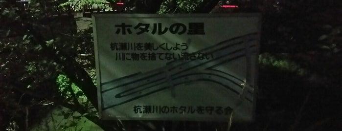杭瀬川中島橋 is one of FAVORITE PLACE.