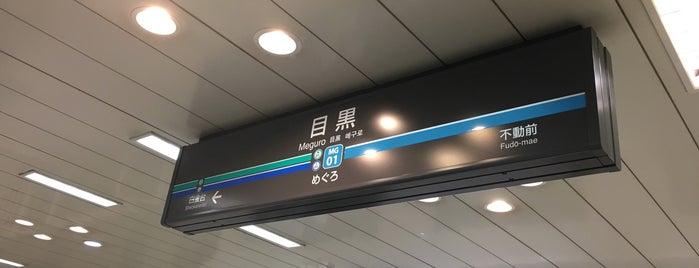 Namboku Line Meguro Station (N01) is one of Tokyo - Yokohama train stations.