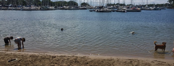 Belmont Harbor Dog Beach is one of สถานที่ที่ Danielle ถูกใจ.