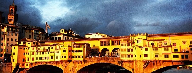 Ponte Vecchio is one of Lieux qui ont plu à Elizaveta.