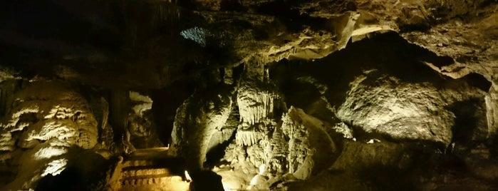 Cueva de las Monedas is one of De turismo por Cantabria.