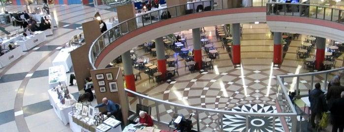 The Atrium at the Thompson Center is one of Locais salvos de Gardenia.