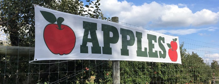 Apple Dave's Orchards is one of Pick Your Own NYC.