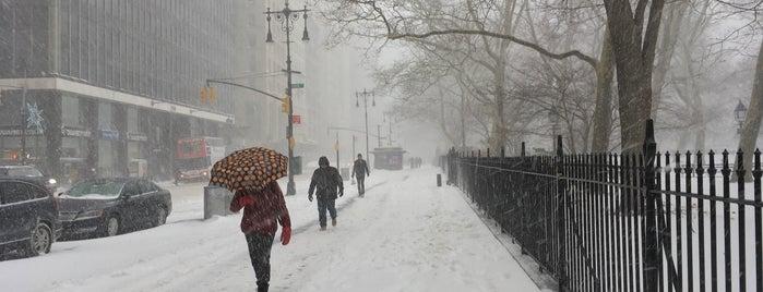 Snowpocalypse 2018 is one of Crazy Places.